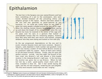 """Epithalamion"" - Poem by GC Waldrep, Art by Kate Baird - a Broadsided Press Collaboration"