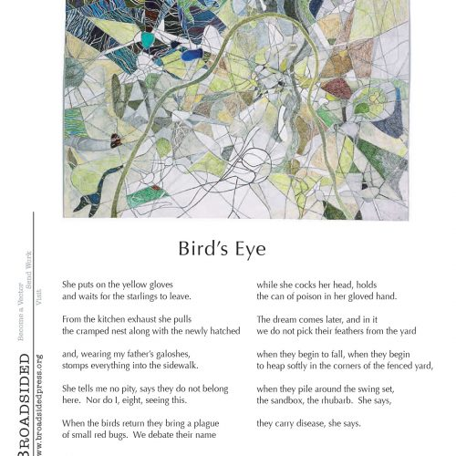 """Bird's Eye"" - Poem by Amanda Warren, Art by Kate Baird - a Broadsided Press Collaboration"