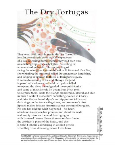 """The Dry Tortugas"" - Poem by Molly Fisk, Art by Yuko Adachi - a Broadsided Press Collaboration"
