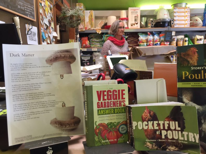 Artist in far background in garden shop with broadside propped up on left, in foreground.