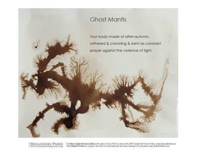 "Broadside of ""Ghost Mantis,"" poem by Marci Calabretta Cancio-Bello with art by Elizabeth Terhune."