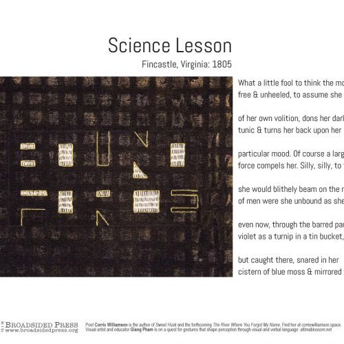 """Broadside of """"Science Lesson,"""" poem by Corrie Williamson with art by Millian Giang Pham."""