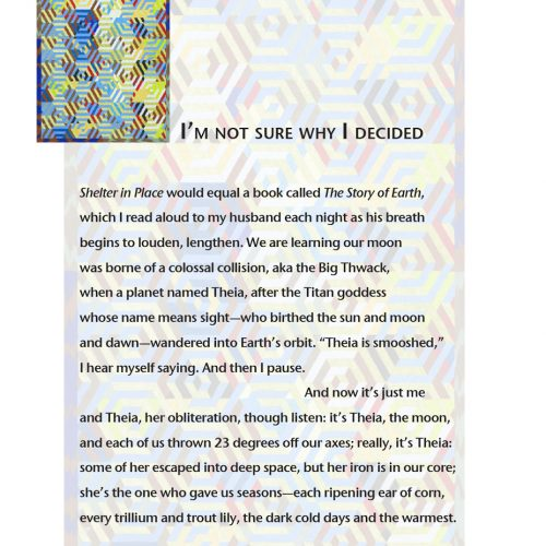 """Broadside of """"I'm not sure why I decided"""" by poet Martha Silano and artist Jen Harris."""