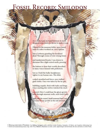 """Broadside of """"Fossil Record: Smilodon,"""" poem by Brittney Corrigan with art by Michele L'Heureux."""